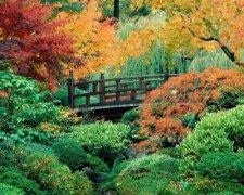 秋颂(To Autumn)