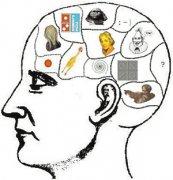 大脑揭秘——记
