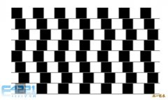 神奇图片-挑战右脑4