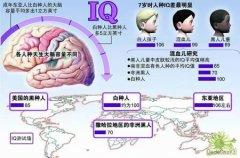 爱因斯坦大脑的